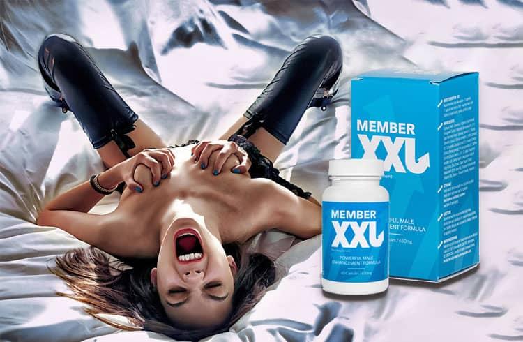 Member XXL – Cena